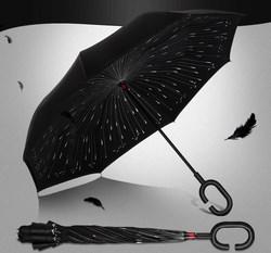 Dù ngược đi mưa